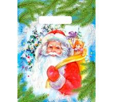 Пакет полиэтиленовый НГ «Ждите подарки» 23х30 30мкм ПВД