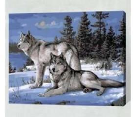 Картина-раскраска по номерам «Ночные волки»
