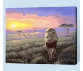 Картина-раскраска по номерам «Царь зверей»