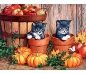 Картина-раскраска по номерам «Котята и урожай»