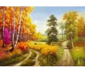 Алмазная мозайка «Осенний лес» 30х40