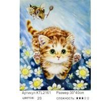 "Картина по номерам 30x40 ""Котёнок"""