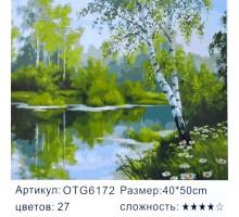 """Картина-раскраска по номерам 40x50 """"Берёза над водой"""""""