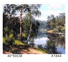 """Картина-раскраска по номерам 40x50 """"Берёзы у реки"""""""