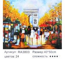 """Картина-раскраска по номерам 40x50 """"Елисейские поля"""""""