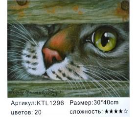 """Картина по номерам 30х40 """"Любопытный кот"""""""