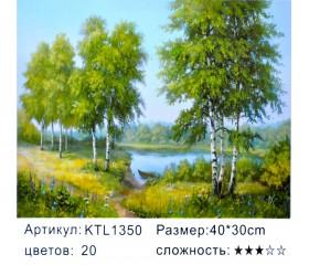"""Картина по номерам 30х40 """"Берёзы"""" KTL1350"""