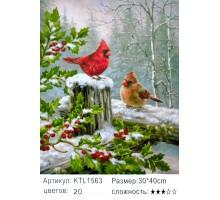 """Картина по номерам 30х40 """"Кардиналы"""" KTL1563"""