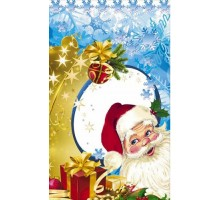 Пакет п/п мет. «Дед Мороз и Снежинка»